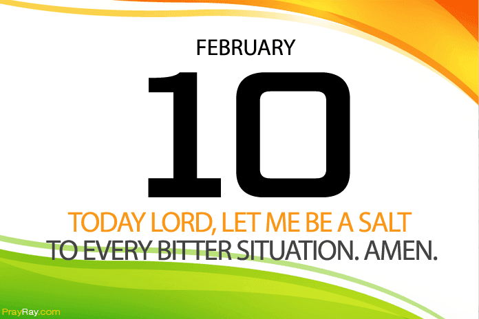 Daily prayer salt of the world bible