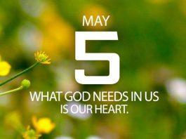 seeking Gods will daily
