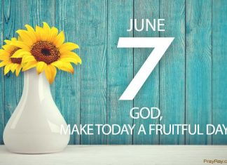Be fruitful and multiply verse