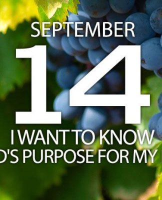 God's purpose for my life