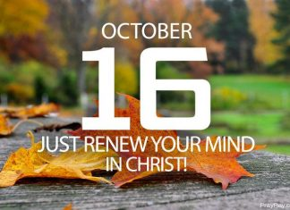 renew your mind in Christ