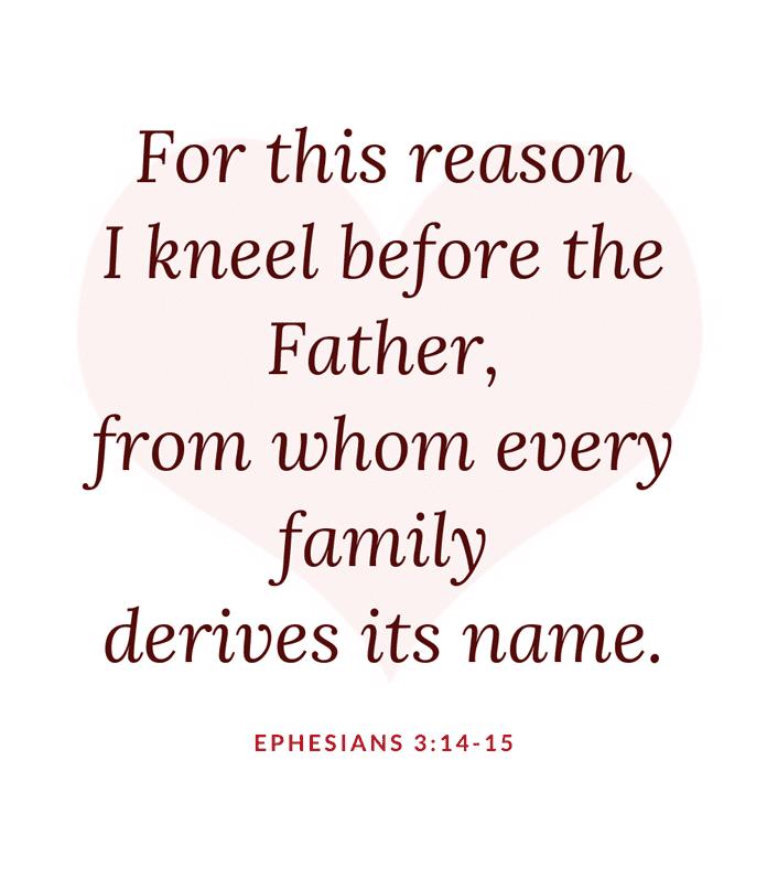 divine mercy prayer for my family